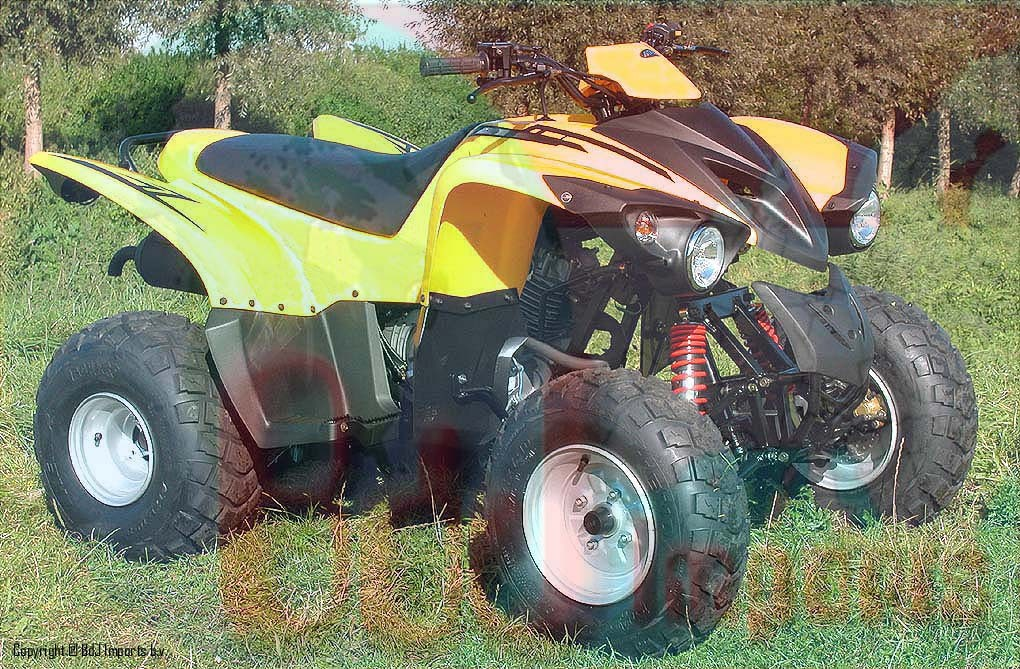 Adly 300 Sport-II yellow