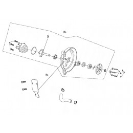 Rotor assy, pump