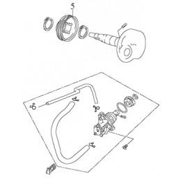Gear, Pump Drive